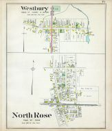 Westbury, North Rose, Wayne County 1904